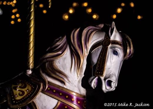Carousel Horse Portrait