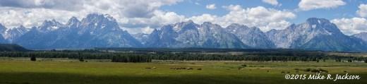 Sunday Horses and Teton Range
