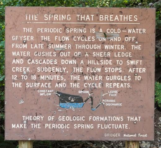 Bridger National Forest Sign