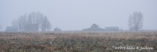 Homestead in Snow