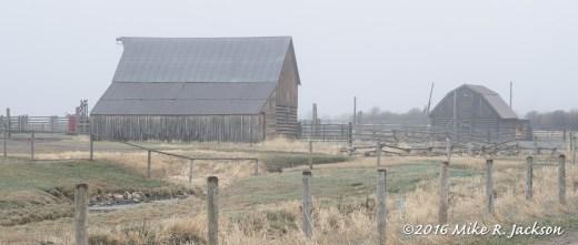 Hansen Barn and Fog