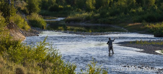 Gros Ventre Fisherman