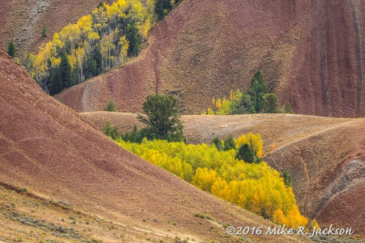 Red Hills of the Gros Ventre