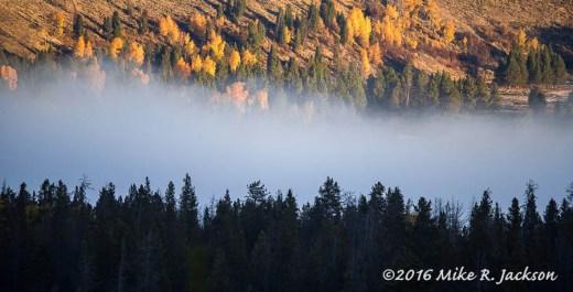 Snake River Fog
