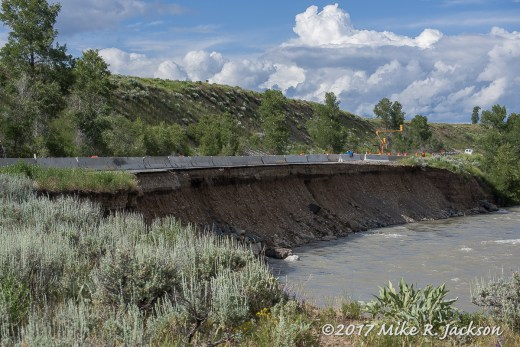 Gros Ventre River Bank