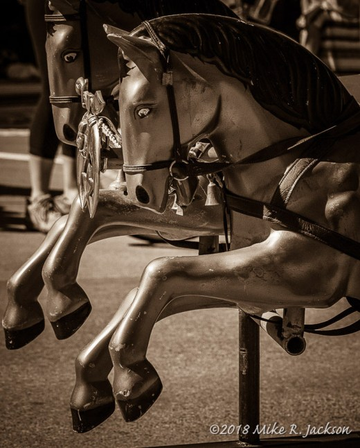 Ornamental Horses