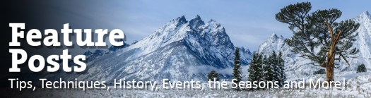 Your source for amazing tips about park photography in Jackson, WY