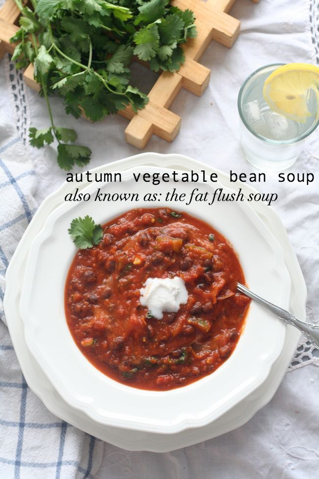 Autumn Vegetable Bean Soup (Fat Flush Soup)