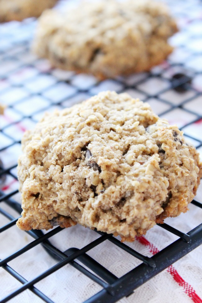 Oatmeal Chocolate-Chip (and Bean!) Cookies Gluten-Free
