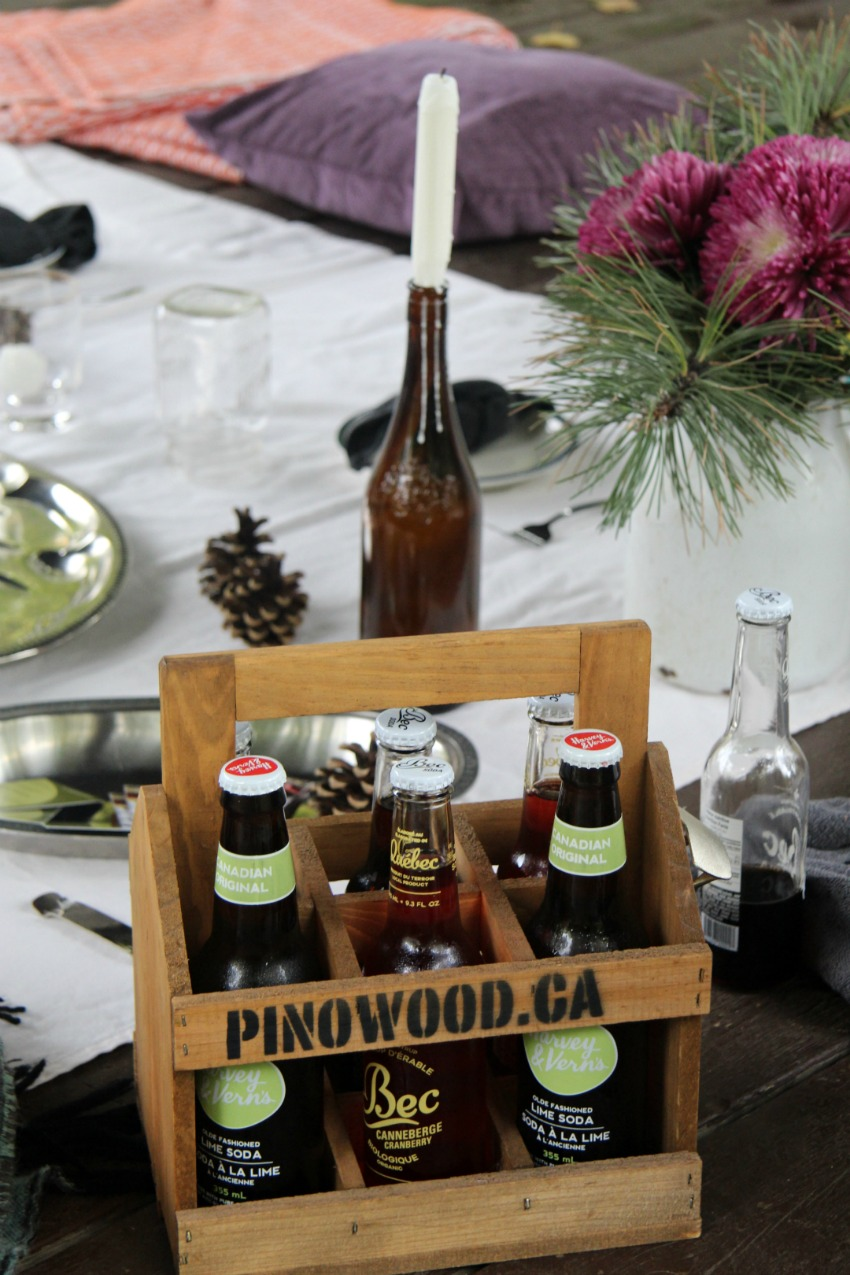 How to Plan A Rustic Picnic in Old Aylmer-Gatineau