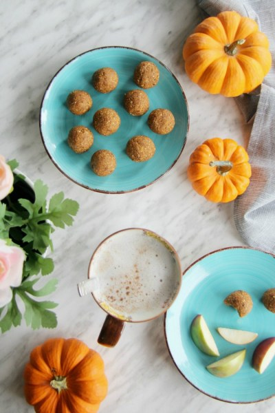 Healthy Pumpkin Pie Energy Bites