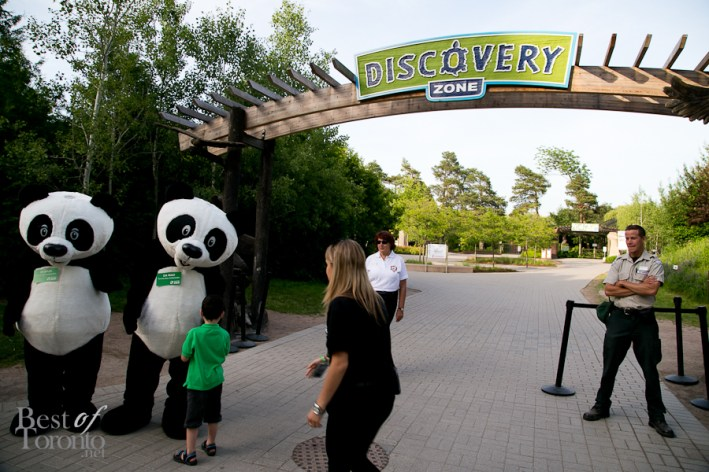 Greetings from the Giant Panda mascots, Er Shun and Da Mao