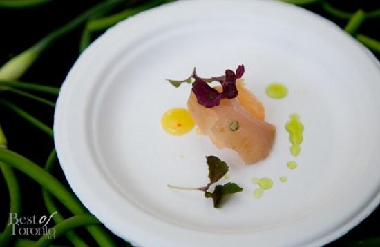 Seafood-for-Thought-2013-Toronto-Zoo-BestofToronto-024