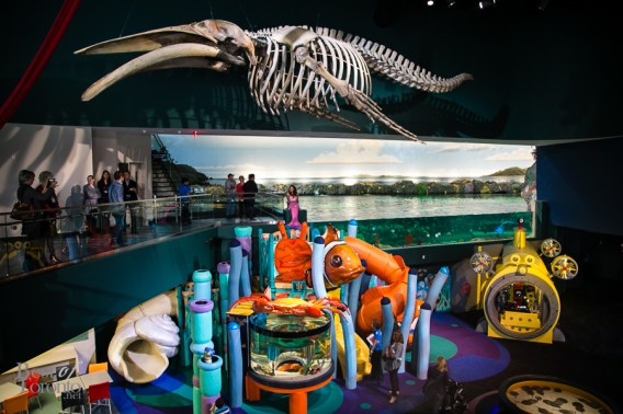 Ripleys-Aquarium-BestofToronto-2013-003