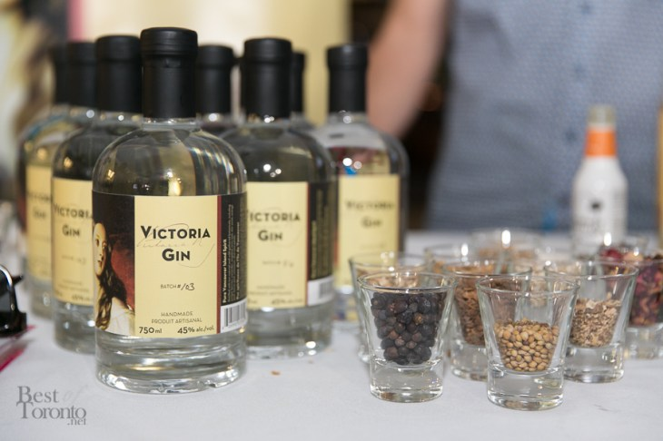 Toronto-Taste-Second-Harvest-BestofToronto-2014-035