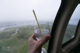 A gin and tonic garnished with fresh lemongrass stem in a helicopter
