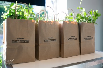 Our take-home bags with fresh herbs