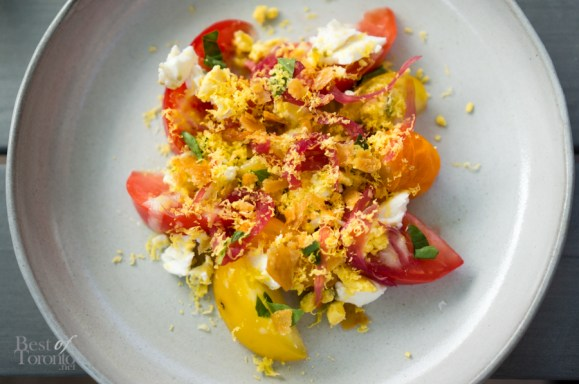 Heirloom Tomato Salad - Cured Egg, Pickled Onion, Chicken Crackling, Basil
