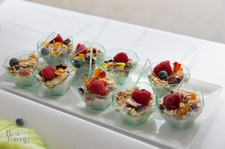 Mini fruit, granola and yogurt cups