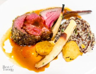 Pistachio mint crusted Ontario lamb rack with Chermoula rub, red and black quinoa, baby turnips & saffron jus
