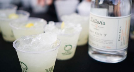 Dillon's Distillers - Gin 'n' Goodness by Ana Wolkowski