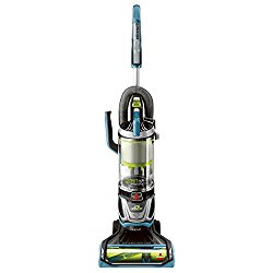 10 Best Rated Vacuum Cleaners For Long Hair 2019 Best Of