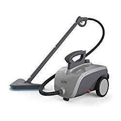 best all purpose steam cleaner