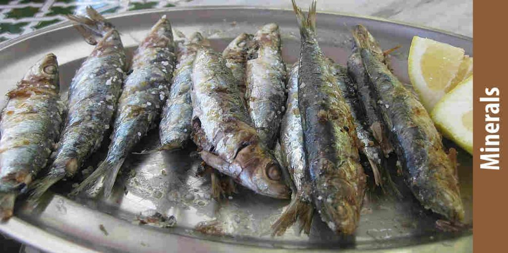 Minerals: how to eat canned sardines