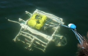 Intro Ocean Science Engineering