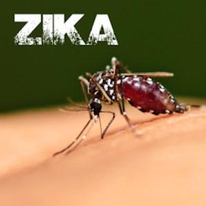 Alison Zika Virus Course