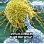 Cancer Immunotherapy: A Step Change in Cancer Treatment