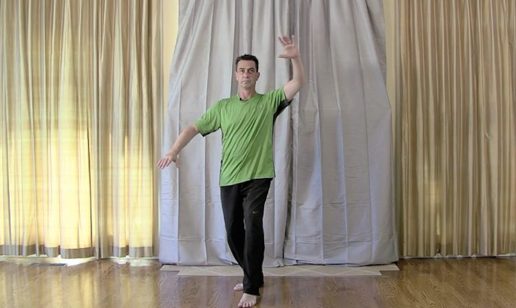 Udemy Tai Chi Beginners Course