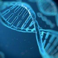 Biology - Genes and Gene Technology