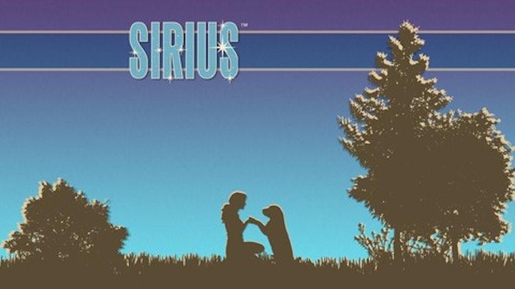Ian Dunbar's SIRIUS Dog Trainer Academy