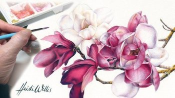 Paint Realistic Watercolor and Botanicals