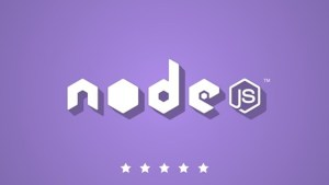 udemy the complete node js developer