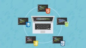 Udemy The Web Developer Bootcamp