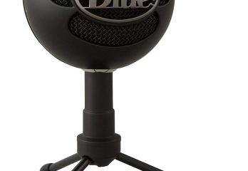 Top 10 Best Blue Microphones for Singing 2019 Review