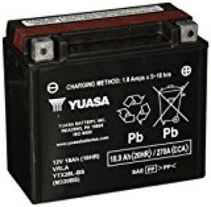 Best Motorcycle Battery Reviews | 201751Perd9gr2BL.SL160-1