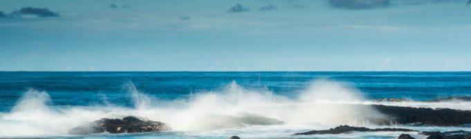 cropped-AFTERNOON_SURF.jpg