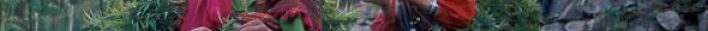 Malana the people of India where cannabis is a way of life 1