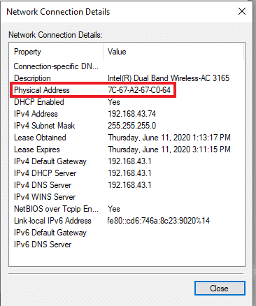 network connection details with physical/mac address