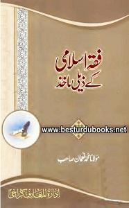 Fiqh e Islami kay Zeli Maakhiz By Maulana Muhammad Noman فقہ اسلامی کے ذیلی مآخذ