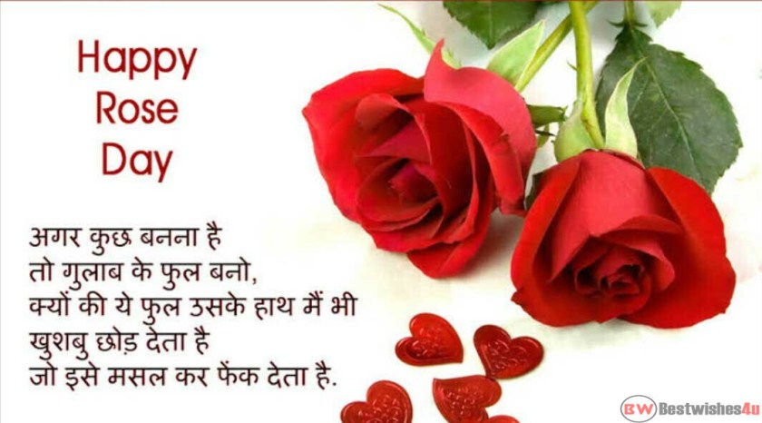 Happy Rose Day Quotes   Rose Day Wishes In Hindi   Rose Day Messages
