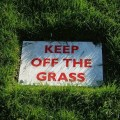 Keep of the grass - when will horse racing resume in the UK?