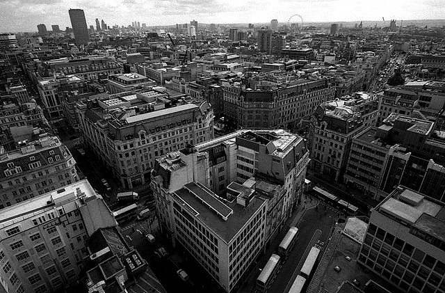 Photo by Daniel Gorecki.