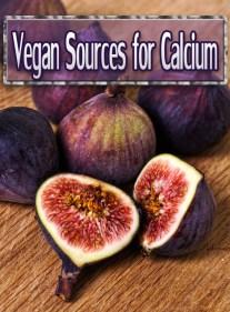 Vegan Sources for Calcium