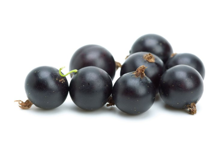 Black Currants Nutritional Facts  – Vitamin C Bombs