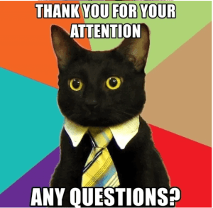 thank you for your attention any questions - cat thanks you meme
