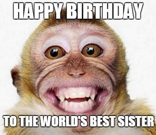 happy birthday sister meme images